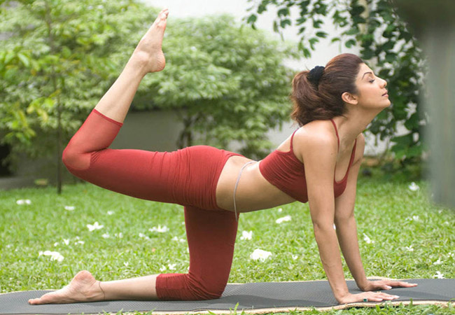 Yoga Clothing Industry Report 2018: Global Market Opportunities, Revenue  and Forecast to 2025 - EditMeet